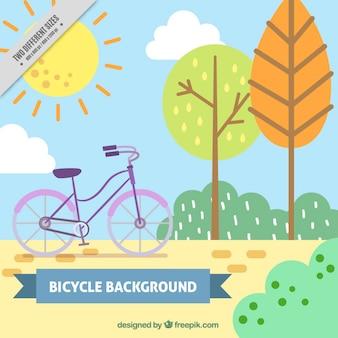 공원 배경에서 자전거