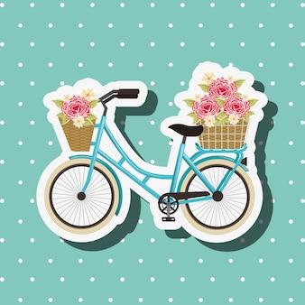 Bike repair and shop
