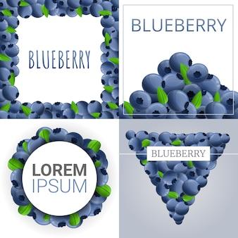 Bilberry banner set, cartoon style