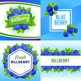 Bilberry banner set, cartoon style