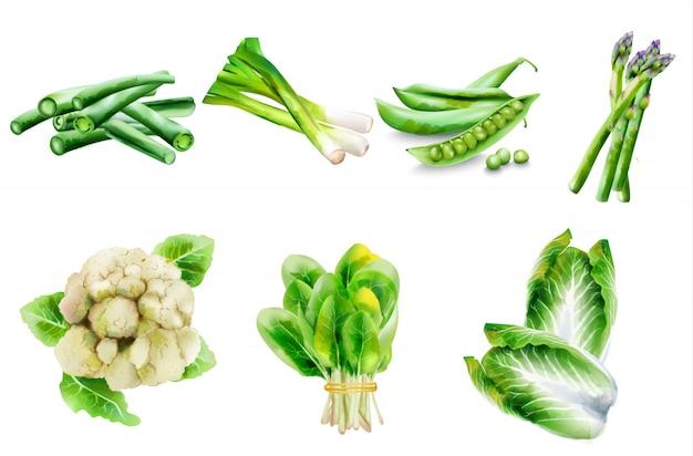 さまざまな野菜のバイオメニューカバー。
