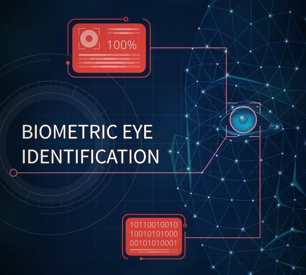 Biometric eye identification abstract illustrated providing protection using identification by eye iris vector illustration