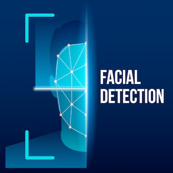 Biometric face verification scan, identification.