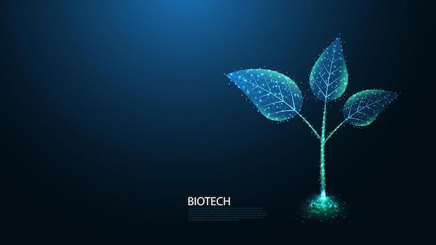 생명 공학 라인 연결. 녹색 성장 식물 새싹 낮은 폴리 와이어 프레임 디자인.