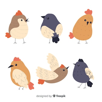Bird collection in hand drawn style