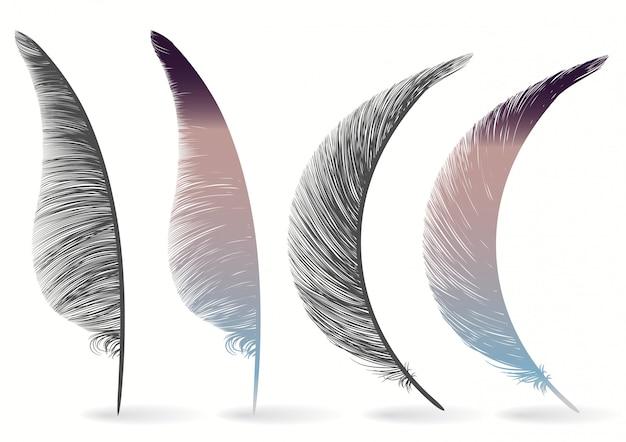 Значок перо птицы, написание символа. падшие пушистые перья изолированы. набор экзотических мягких перьев. векторная иллюстрация