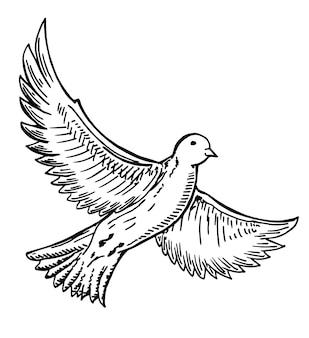 手描きの鳥の飛行。インクの黒と白の描画。スケッチベクトル