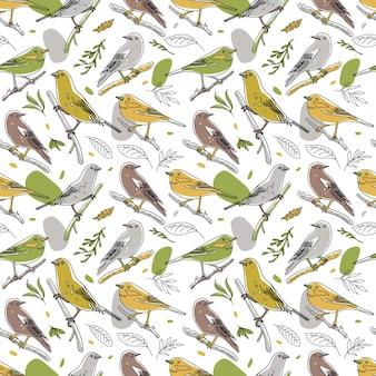 Птица иллюстрация бесшовные модели коллекция милых рисованной птицы каракулей в стиле минимализма ...