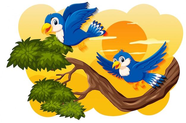 自然日没シーンの鳥