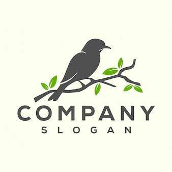 Bird logo design
