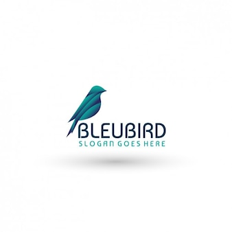 Bird Logo Template