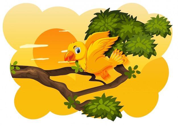 Bird in nature sunset scene
