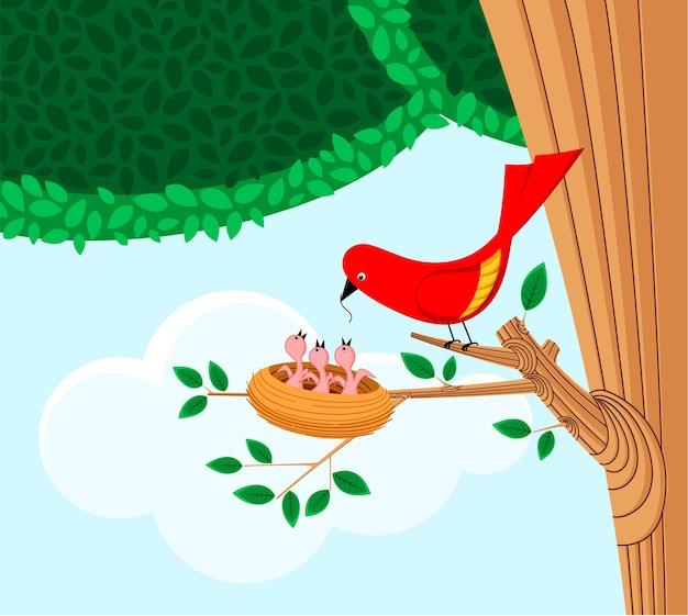 새와 둥지