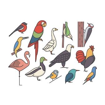 Птица, контур иллюстрации, набор иконок