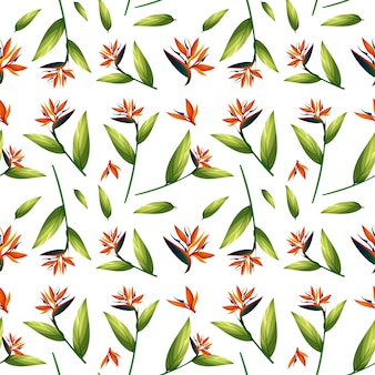 Bird of paradise seamless pattern