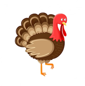 Bird symbol of thanksgiving day isolated vector