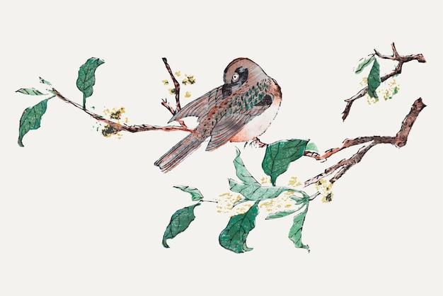 胡正言のアートワークからリミックスされた木のイラストにとまる鳥のベクトル