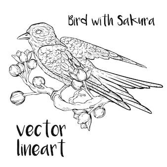 Bird with sakura