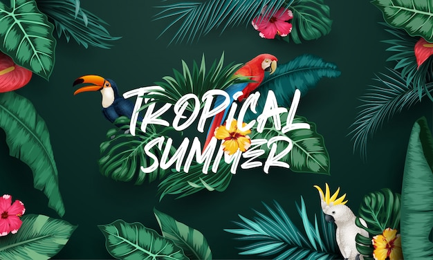 Birds collection and tropical plants background