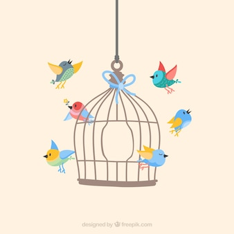 Birds flying from cage