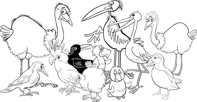 Birds group coloring book