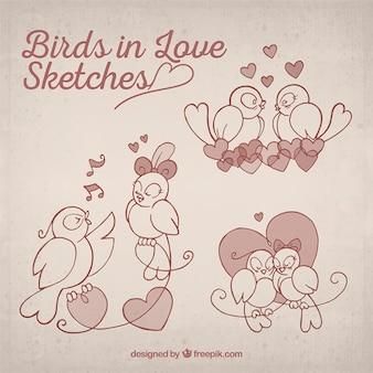 愛のスケッチで鳥
