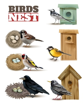 Birds nest set with editable text and realistic images of birds with wild nests and birdhouses