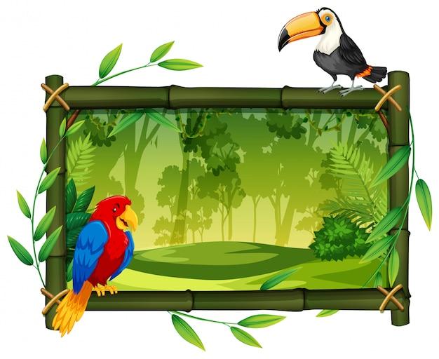ジャングルの額縁上の鳥