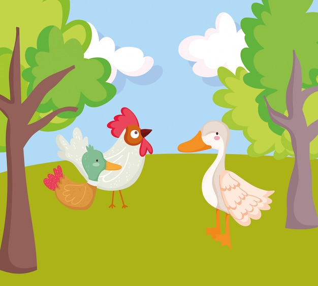 Birds rooster duck goose trees grass farm animal cartoon illustration