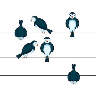 さまざまな位置でワイヤーに座っている鳥裏側と正面のスズメ