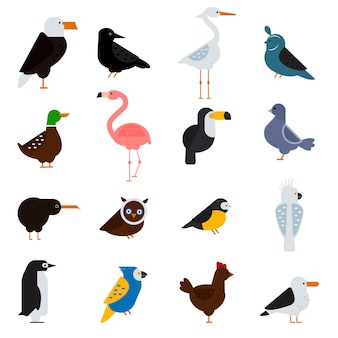 Birds vector set illustration. eagle, parrot. pigeon and toucan. penguins, flamingos. crows, peacocks. black grouse, chicken. sofa, heron