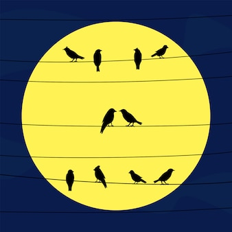 Birds on wires in full moon light