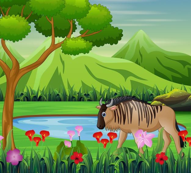 아름다운 자연 속에서 들소 동물 만화