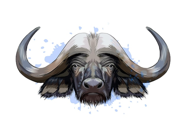Bison, buffalo head portrait from a splash of watercolor, colored drawing, realistic.