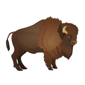 들소 뿔이 있는 큰 발가락이 있는 유제류 황소 육상 동물