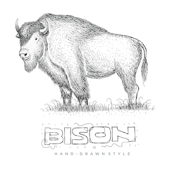 バイソンベクトル、手描きスタイルの動物のイラスト
