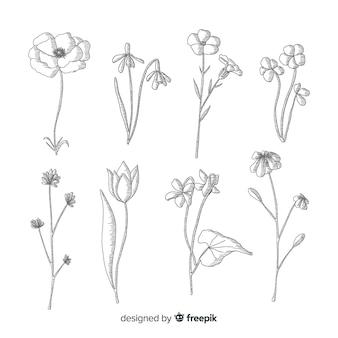 植物の花の黒と白のデザイン