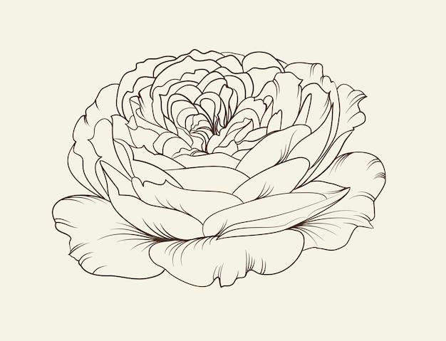 Черно-белая цветочная роза.