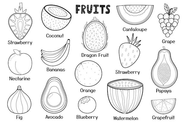 흑백 과일 컬렉션 건강에 좋은 음식 고립 된 요소 색칠 페이지 조리법에 적합
