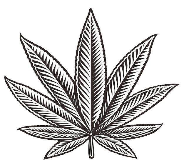 白い背景の上の大麻葉の黒と白のイラスト。