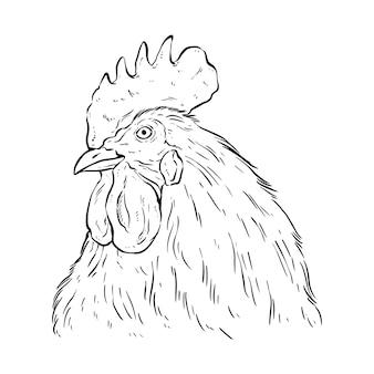 Черно-белая голова петуха в стиле рисования или эскиза
