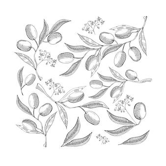 白地に抽象的なオリーブの葉とベリーと黒と白のシームレスなパターン