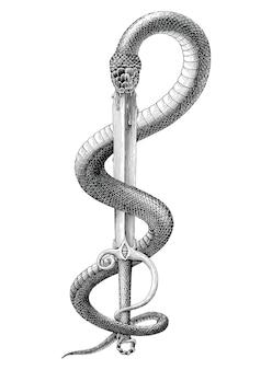 흑인과 백인 뱀이 조각 스타일의 칼에 갇혀있다.