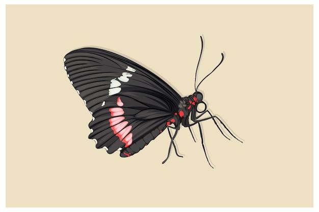 Черная бабочка реалистичный стиль рисования руки