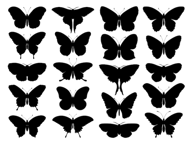 Black butterfly silhouettes outline romantic tattoo tropical insects stencil isolated set