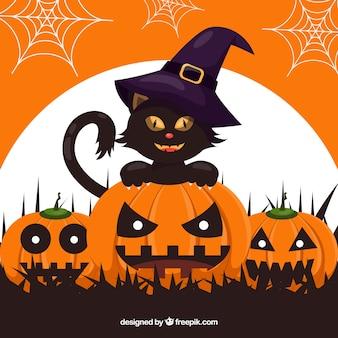 Sfondo nero gatto con zucche e cappello da strega