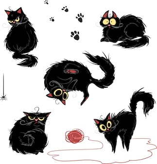 Black cat in different poses and different emotions on a white background