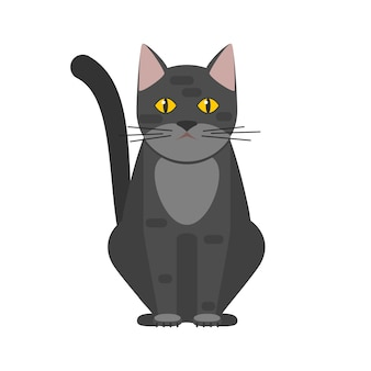 노란 눈을 가진 검은 고양이