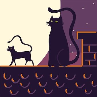 屋根の上の黒猫