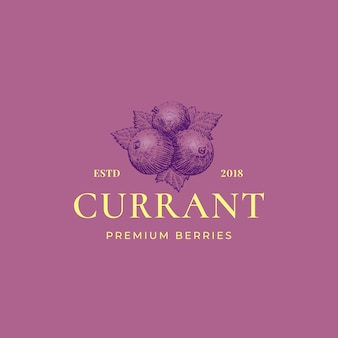 Black currant abstract  sign, symbol or logo template.